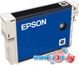 Картридж для принтера Epson EPT08014010 (C13T08014010) в Могилёве