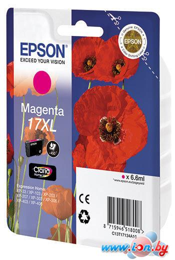 Картридж для принтера Epson C13T17134A10 в Могилёве