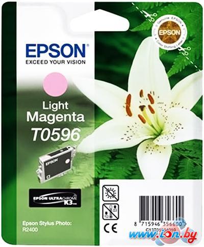 Картридж для принтера Epson C13T05964010 в Могилёве