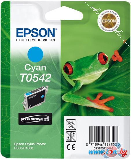 Картридж для принтера Epson C13T05424010 в Могилёве