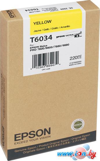 Картридж для принтера Epson C13T603400 в Могилёве