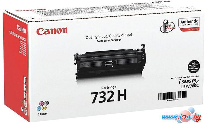 Картридж для принтера Canon 732HBK в Могилёве