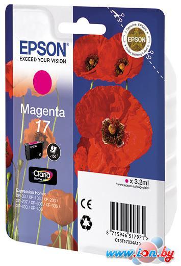 Картридж для принтера Epson C13T17034A10 в Могилёве