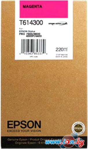 Картридж для принтера Epson C13T614300 в Могилёве