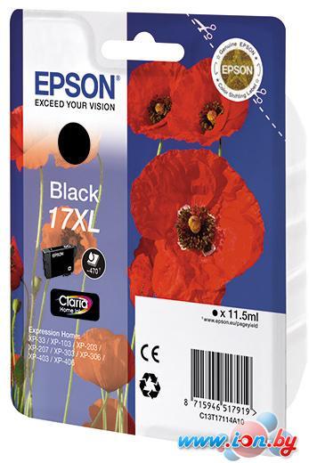 Картридж для принтера Epson C13T17114A10 в Могилёве