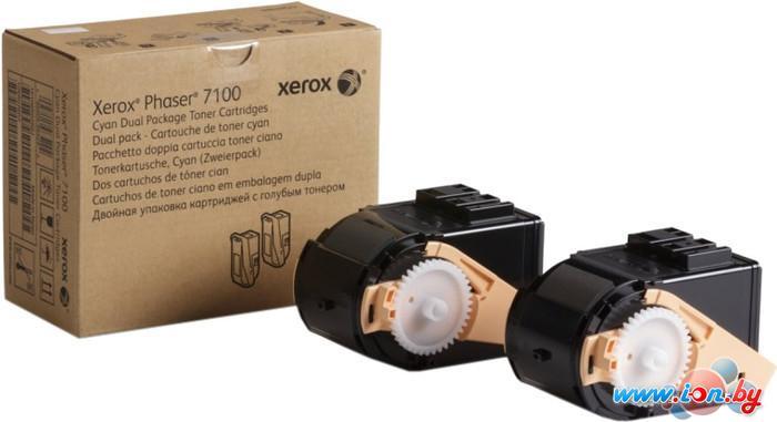 Картридж для принтера Xerox 106R02611 в Могилёве