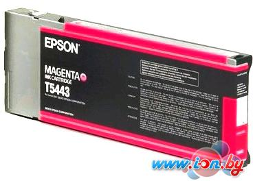 Картридж для принтера Epson C13T544300 в Могилёве