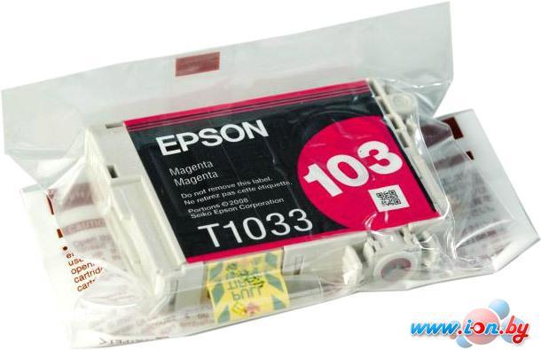 Картридж для принтера Epson C13T10334A10 в Могилёве
