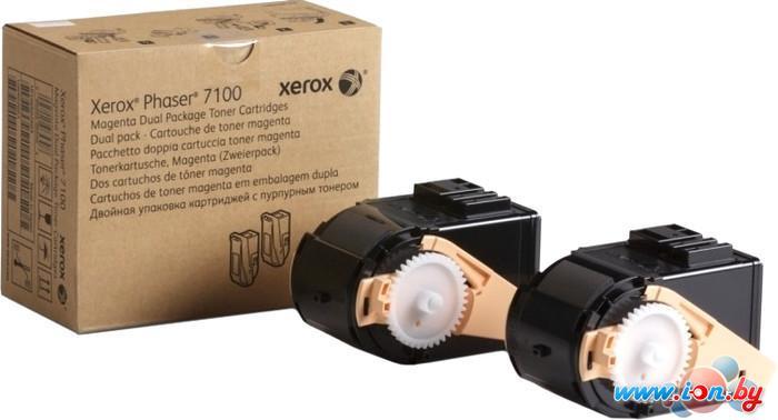 Картридж для принтера Xerox 106R02610 в Могилёве