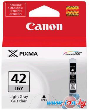 Картридж для принтера Canon CLI-42LGY в Могилёве