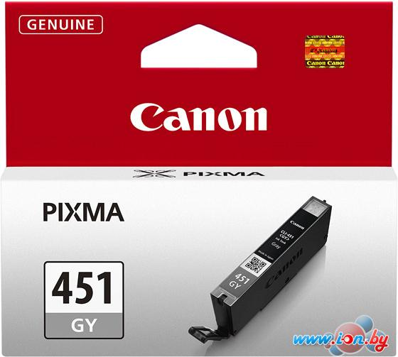 Картридж для принтера Canon CLI-451GY (6527B001) в Могилёве