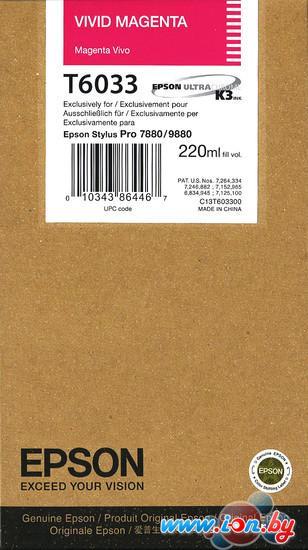Картридж для принтера Epson C13T603300 в Могилёве