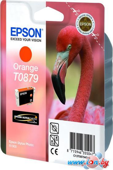 Картридж для принтера Epson C13T08794010 в Могилёве