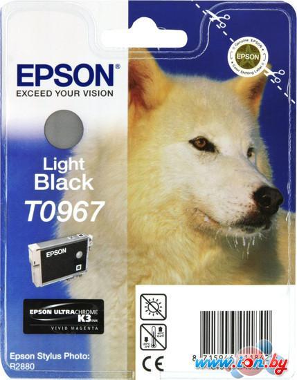 Картридж для принтера Epson C13T09674010 в Могилёве