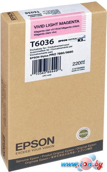 Картридж для принтера Epson C13T603600 в Могилёве