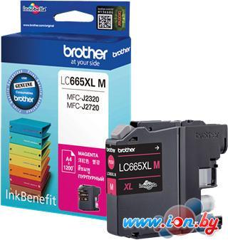 Картридж для принтера Brother LC665XLM в Могилёве