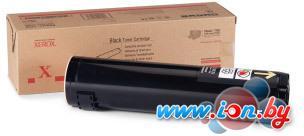 Картридж для принтера Xerox 106R01163 в Могилёве