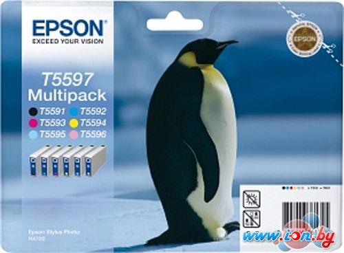 Картридж для принтера Epson C13T55974010 в Могилёве