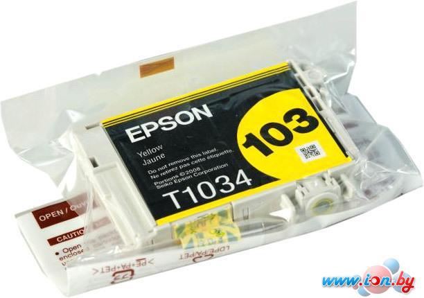 Картридж для принтера Epson C13T10344A10 в Могилёве