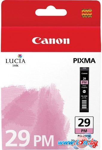 Картридж для принтера Canon PGI-29PM (4877B002) в Могилёве