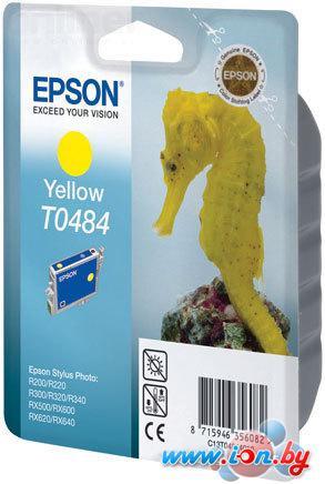 Картридж для принтера Epson EPT04844010 (C13T04844010) в Могилёве