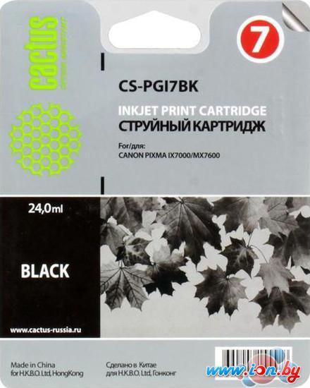 Картридж для принтера CACTUS CS-PGI7BK в Могилёве