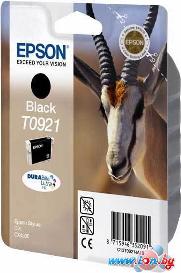 Картридж для принтера Epson EPT09214A10 (C13T10814A10) в Могилёве