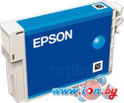 Картридж для принтера Epson EPT08024010 в Могилёве
