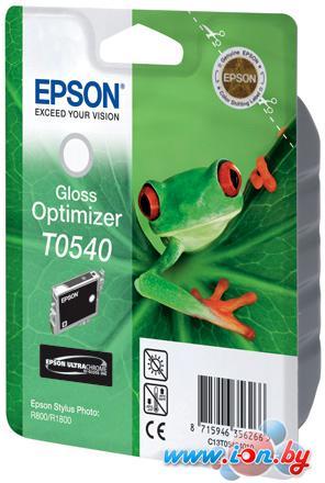 Картридж для принтера Epson C13T054040 в Могилёве