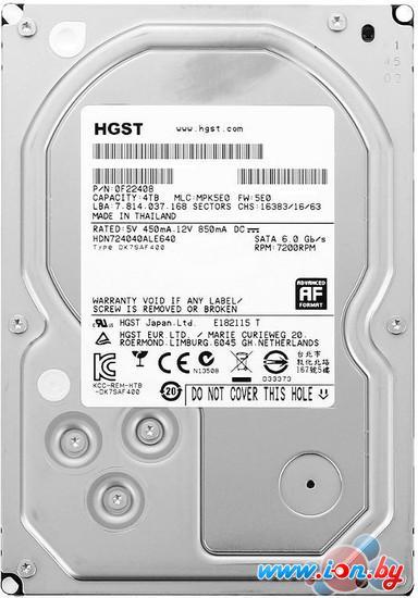 Жесткий диск Hitachi Deskstar NAS 6TB (H3IKNASN600012872SE) в Могилёве
