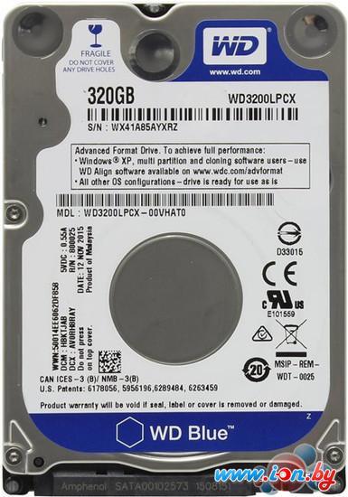 Жесткий диск WD Blue 320GB [WD3200LPCX] в Могилёве