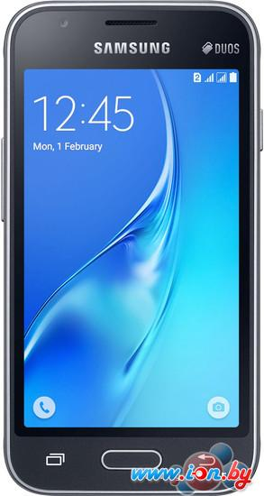 Смартфон Samsung Galaxy J1 mini Black [J105H] в Могилёве