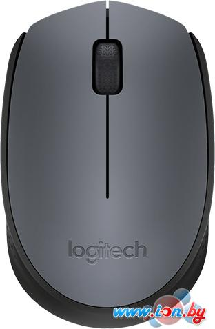 Мышь Logitech M170 Wireless Mouse Gray/Black [910-004642] в Могилёве