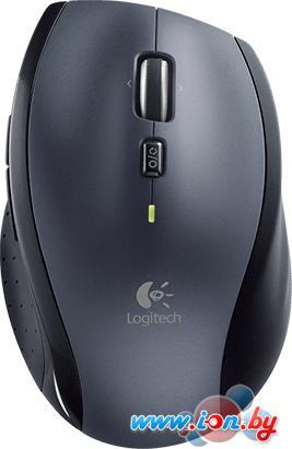 Мышь Logitech Marathon Mouse M705 [910-001950] в Могилёве