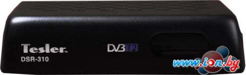 Приемник цифрового ТВ Tesler DSR-310 в Могилёве