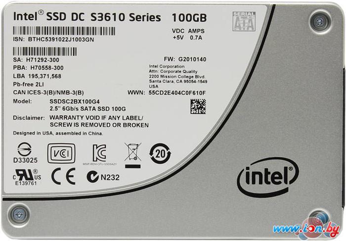 SSD Intel DC S3610 100GB [SSDSC2BX100G401] в Могилёве