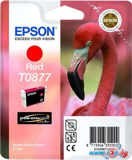 Картридж для принтера Epson C13T08774010 в Могилёве
