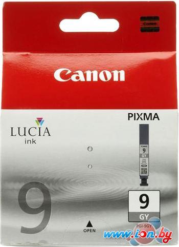 Картридж для принтера Canon PGI-9 Grey (1042B001) в Могилёве
