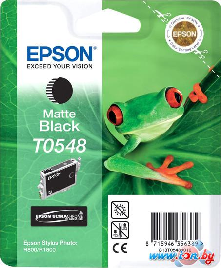 Картридж для принтера Epson C13T05484010 в Могилёве