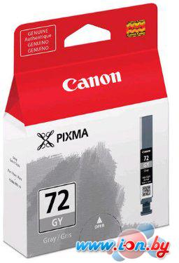 Картридж для принтера Canon PGI-72 GY в Могилёве