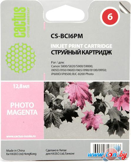 Картридж для принтера CACTUS CS-BCI6PM в Могилёве
