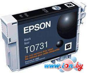 Картридж для принтера Epson EPT07214A10 (C13T10414A10) в Могилёве