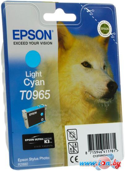 Картридж для принтера Epson C13T09654010 в Могилёве