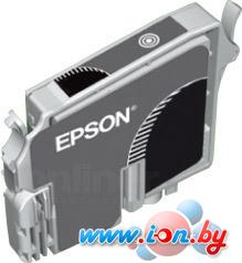 Картридж для принтера Epson EPT34840 (C13T03484010) в Могилёве