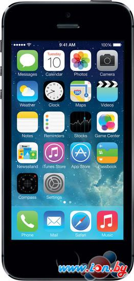 Смартфон Apple iPhone 5s 16GB Space Gray в Могилёве