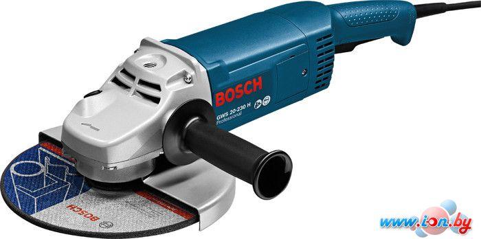 Угловая шлифмашина Bosch GWS 20-230 H Professional [0601850107] в Могилёве