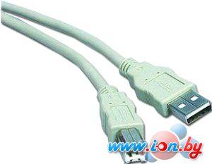 Кабель Gembird CC-USB2-AMBM-10 в Могилёве