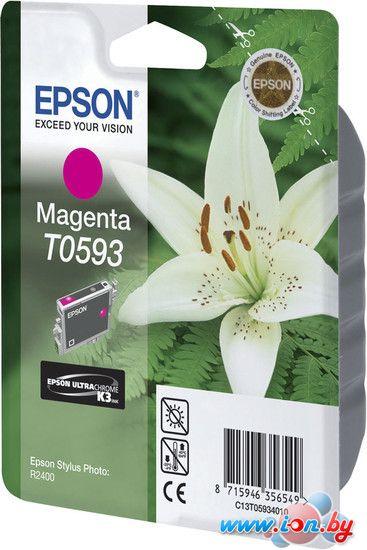 Картридж для принтера Epson C13T05934010 в Могилёве