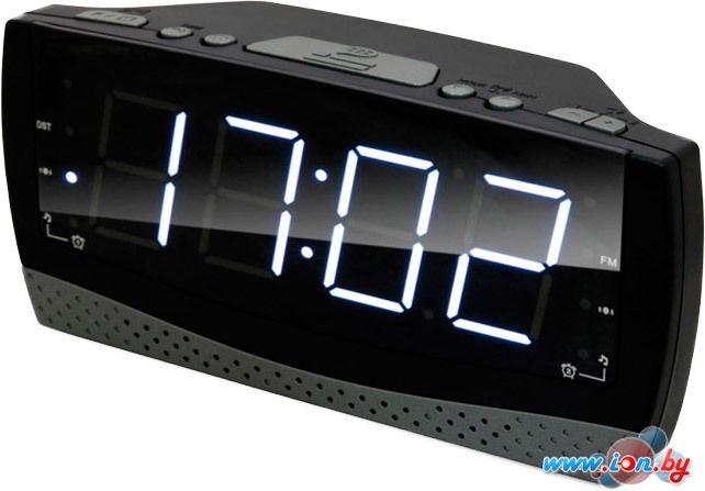 Радиочасы Ritmix RRC-1808 в Могилёве