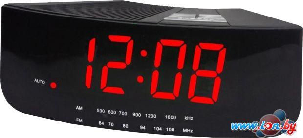 Радиочасы Digion PTCR2618R в Могилёве